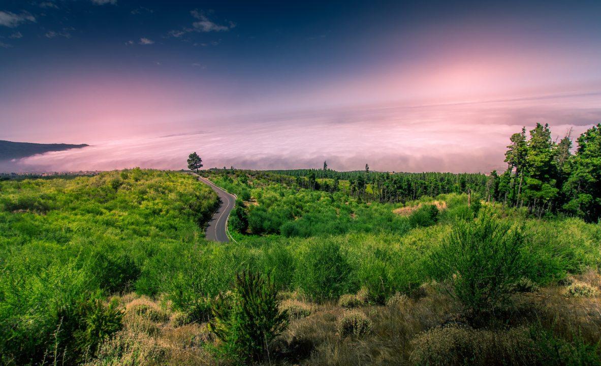 Le 10 migliori escursioni a Tenerife
