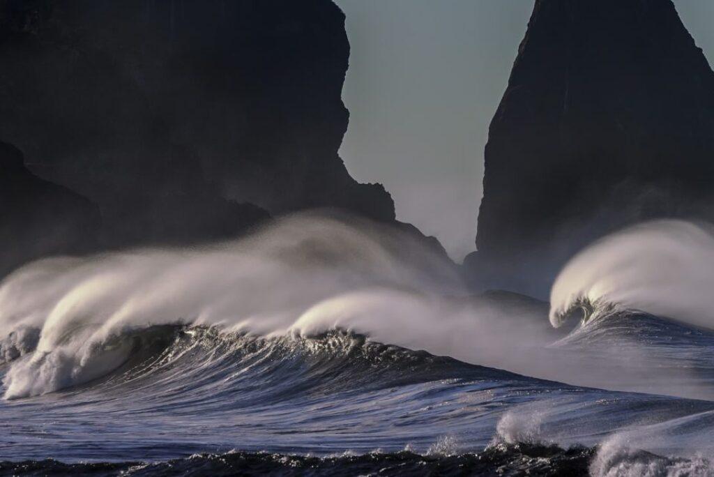 Medio ambiente di Tenerife