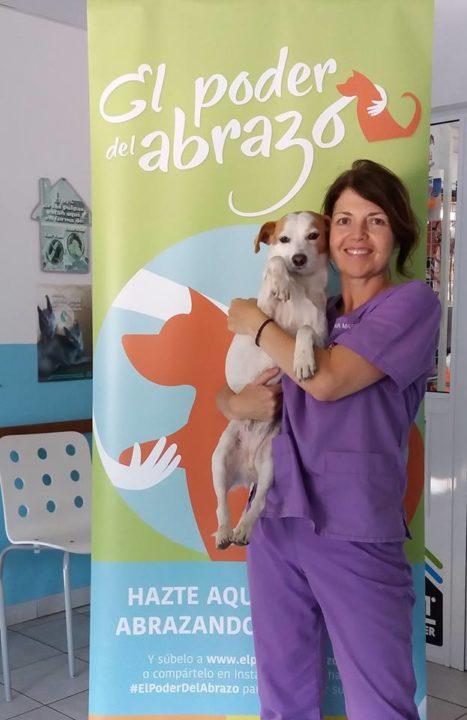 Veterinario El Puertito (4)