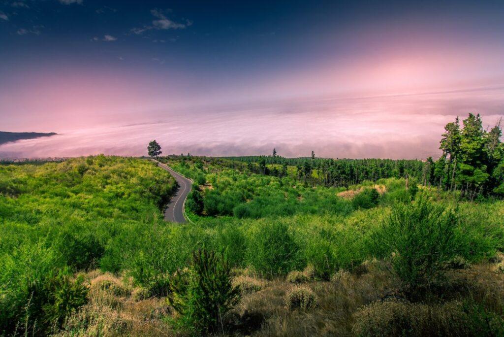Las 10 mejores excursiones en Tenerife