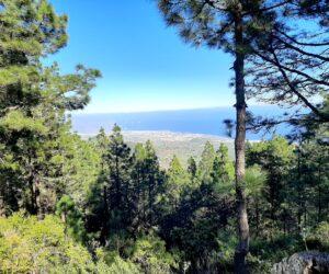 Mirador de Montaña Grande